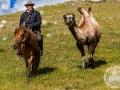 mongolia_tavanbogd_trekking_wielblad_jezdziec