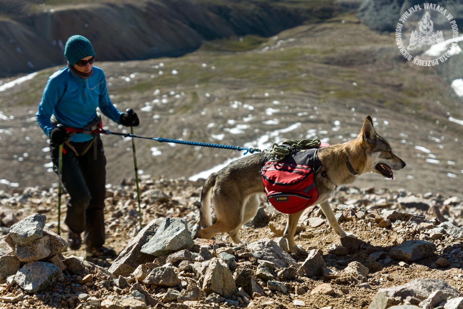 mongolia_tavanbogd_malchin_peak_diuna_agi2