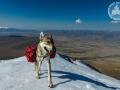 mongolia_tsambagaraw_diuna_snieg