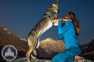 Wychudzona Diuna po przejściu ok. 480 km w Himalajach Garhwalu