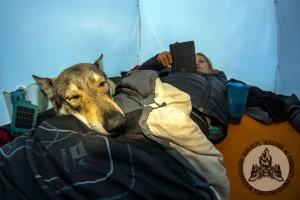 Namiot rozstawiony, herbata gotowa, ebook i można iść spać :)