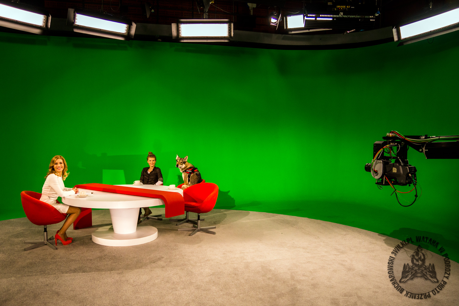 Wataha w TVP Polonia