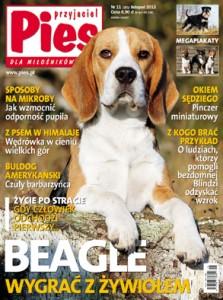 Przyjaciel Pies nr 11/2013