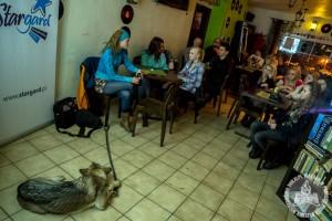 40 osób przyszło na nasz pokaz na festiwalu Pasja w Stargardzie Szczecińskim