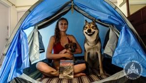 Agi i Diuna testują nasz nowy namiot